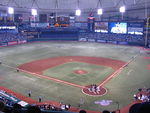 800px-tropicana_field_playing_field_opening_day_2010